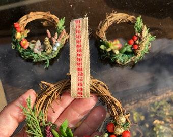 Live Succulent Mini Wreath Ornament