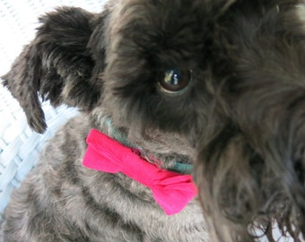 Small Bows / Bow ties for pets