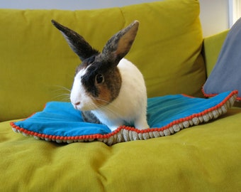 Small Pet Sofa Protector, settee and arm chair protector, lap mat/blanket for travel, and furniture!