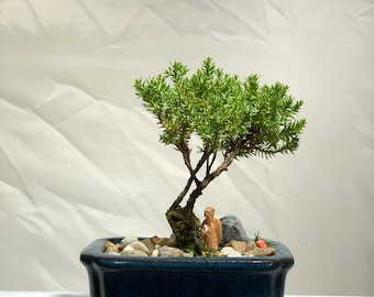 Bonsai Figurines Etsy