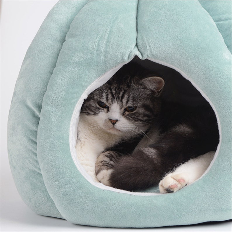 Cat Bed Cactus Shape Soft Cat Cave with Removable Washable Cushioned Pillow