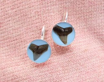 Small Size Genuine Fossilized Shark Teeth with gold bezels