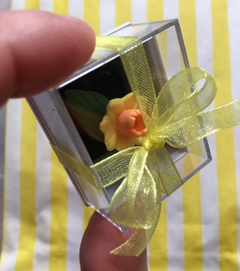 Feelgood Gift Kawaii Keepsake Pocket hug Quirky Gift Unique Gift Missing You Gift Shelf Ornament The wee daffodil in a box