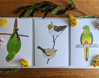 Set of 3 Endangered Bird Greeting Cards - Swift Parrot, Forty-spotted Pardalotes, Orange-bellied Parrot
