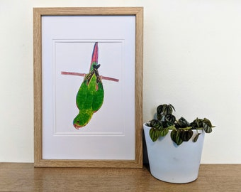 Swift Parrot Bird Art A5 Print