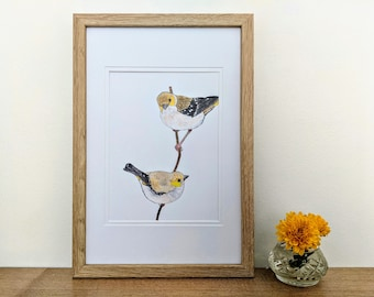 Forty-spotted Pardalotes Bird Art A5 Print