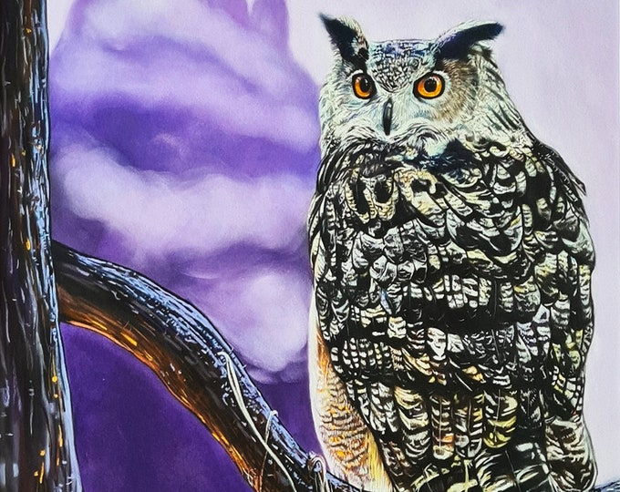 Limited edition print 'Lilac Dreams' | Owl drawing print