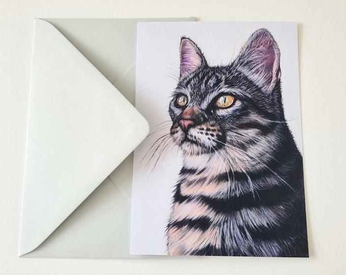 Greeting card | Cat | Cat portrait drawing