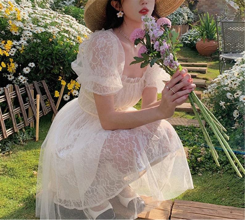 French Fairy Vintage Dress