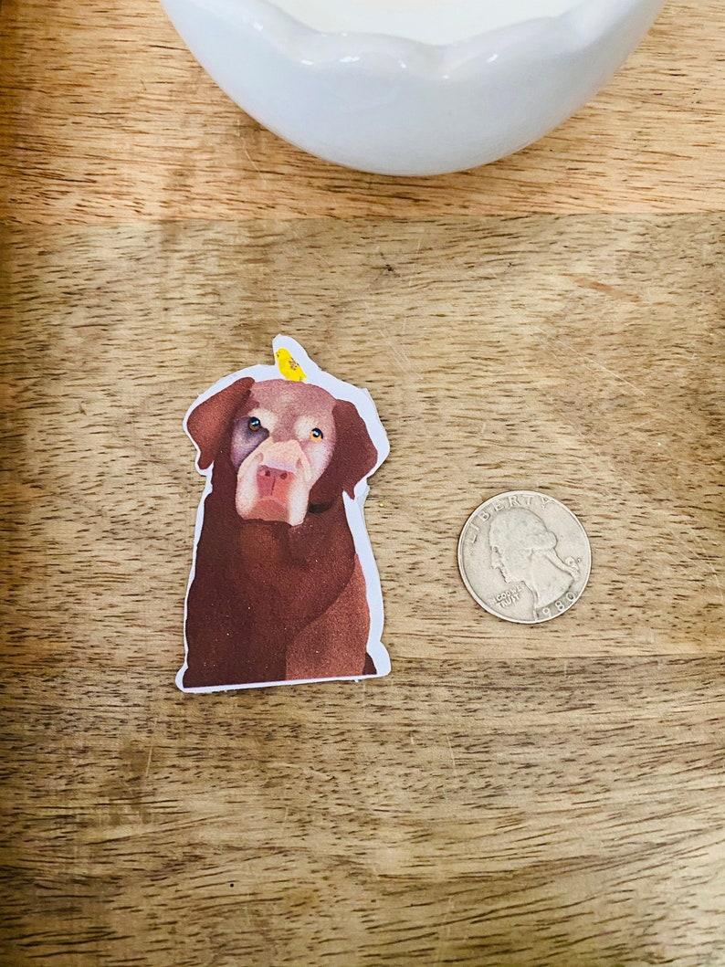 Custom pet sticker!