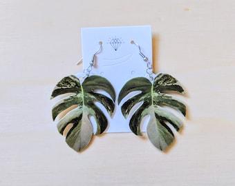 Variegated Monstera Leaf Hypoallergenic Drop Plant Earrings