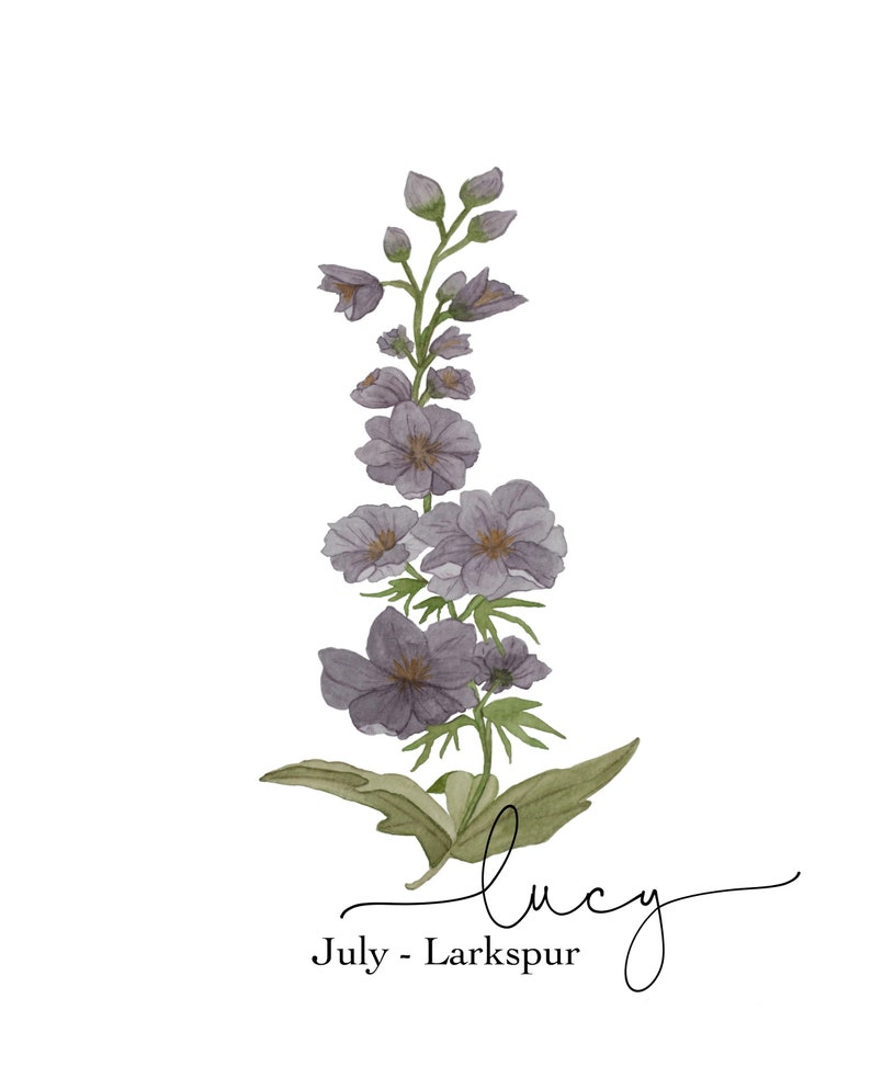 Watercolor Larkspur Painting Watercolor Flower Art Larkspur Birth Flower July Birth Flower Print Birth Flower Art