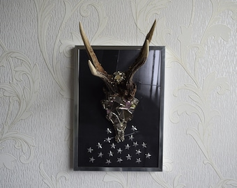 Real deer skull, antlers, picture frame, wall decoration