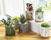 House Office Decor Gift - 6 Pack Succulent Plant Pots, 3.1 inch