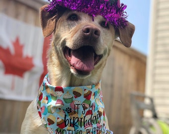 personalized girls lots of colors boys birthday cupcake bandana with name Birthday Dog Bandana