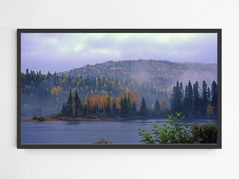 Forest Colorful Samsung Frame TV Art Frame TV Art Foggy Pine Trees Forest Instant Download Digital Download Samsung Art TV Wall Art