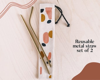 Metal Straw SET OF 2 | Eco Friendly and Reusable Straw | Stainless Steel Straws with unique carrying bag