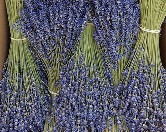 Extra-blue dried lavender bouquet 130g - 350 strands - Direct producer - Haute Provence - France