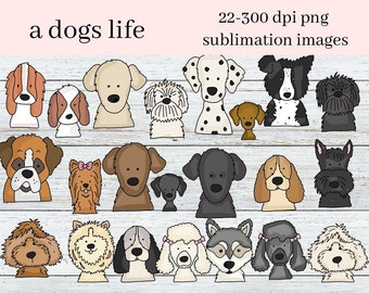 A Dogs Life Digital Clipart - Create Kids Printables - Commercial Use - 22 Dog Images, Border Collie, Dalmatian, Poodle, Husky