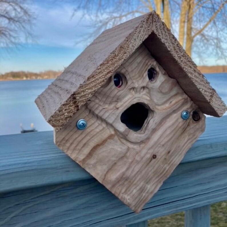 Spirit Frog Birdhouse Froggo\u201d
