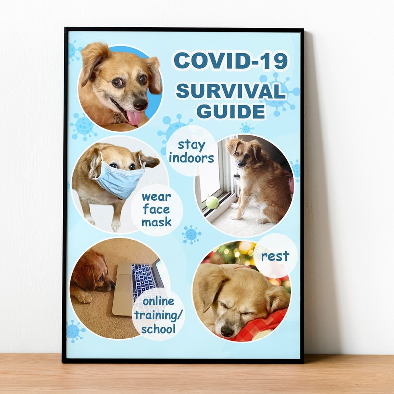 Printable Cute and Adorable puppy Demonstrating Covid 19 Survival guide Suitable for Framing.