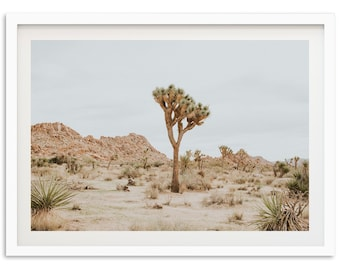 Joshua Tree California Print - National Park Desert Landscape Framed Fine Art Photography Wall Decor