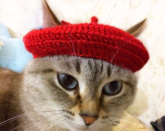 French beret hat, cat crochet pattern, beret hat for cat, stylish pet, hats for pet, funny hat, pattern for pet, accseeories for pet.
