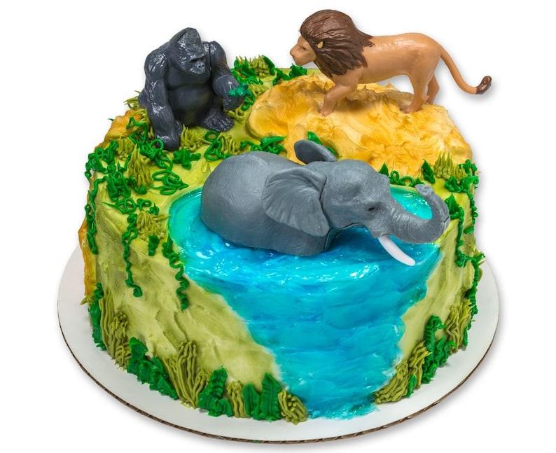 Jungle Buddies Cake Kit