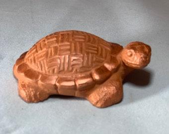 Friendship Turtle