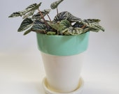 Cream and Mint Hand Painted Flower Pot Planter 4.5 quot