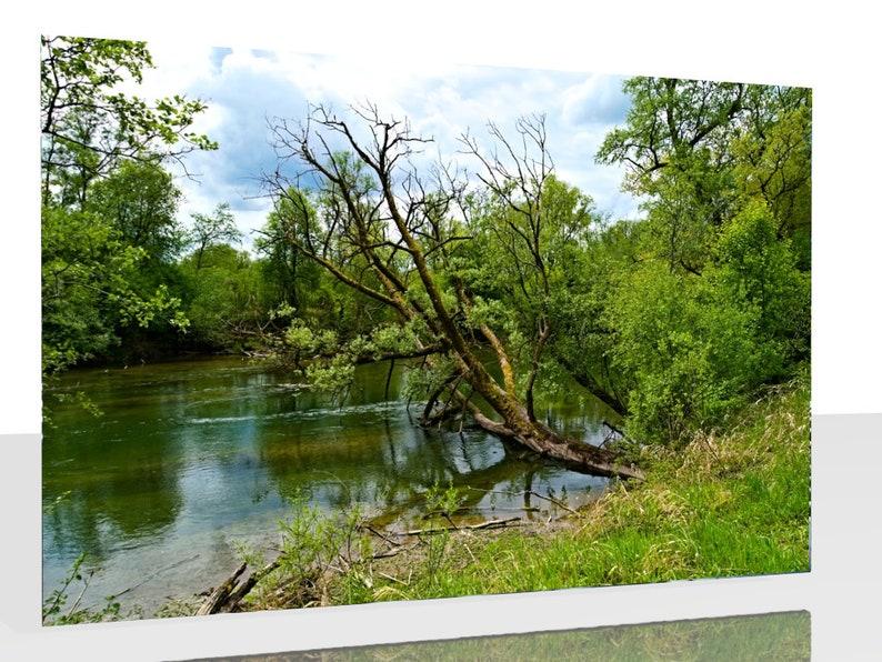 Kunstdruck Wandbild Der Hammerbach am Erlensee Baum im image 0