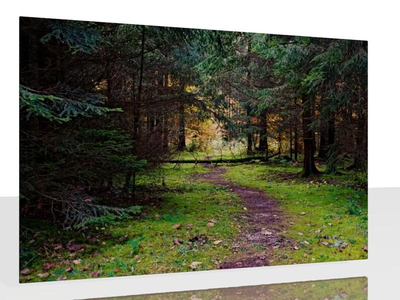 Kunstdruck Wandbild Ein moosiger Waldweg Nadelwald Wald image 0