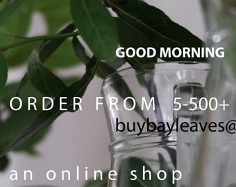 buybayleaves grow and sell bayleaves stem's fresh at Christmas. These Bay Leaf stems are for a numerous of Christmas and Decorating ideas.