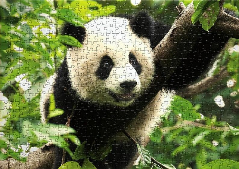12. 500 Piece Colorful Jigsaw Puzzle For Adults