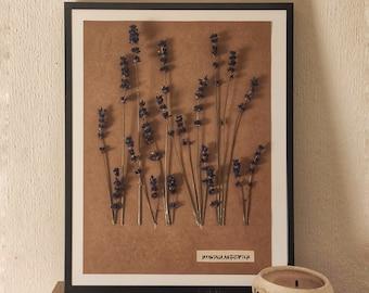 Lavender composition