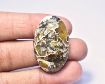 Gorgeous Wild Horse Jasper Cabochon  Top Grade  Wild Horse Gemstone  High Quality  Fancy Shape  26.00 Ct  29x20x6 mm  Loose Gemstone
