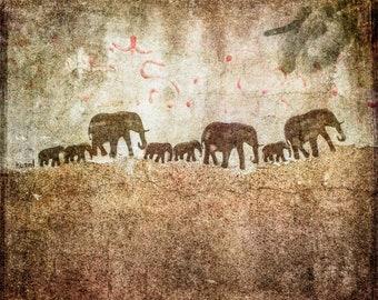 We are family - Elephant family