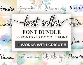 Modern Font Bundle | Modern Font | otf, ttf |Instant Download | Font bundle for Cricut, Silhoutte,Photoshop |FontBundleS01PTH
