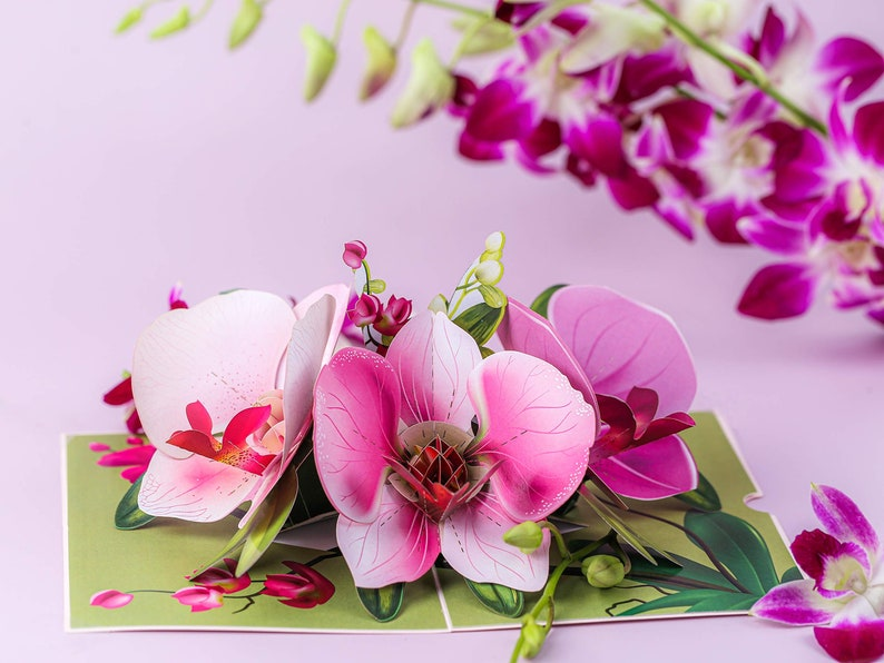 Pop Up Greeting Card Orchid Flower 3D Cards For Birthday image 6