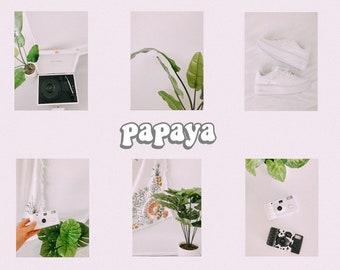 papaya lightroom preset