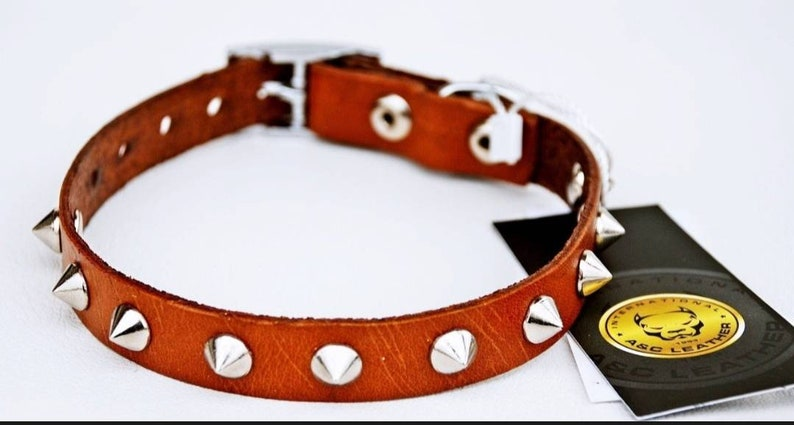 Puppy Collar Dog Collar for Small Dogs Custom Dog Collar Leather Studded Dog Collars Girl and Boy dog collars Brown /& Black