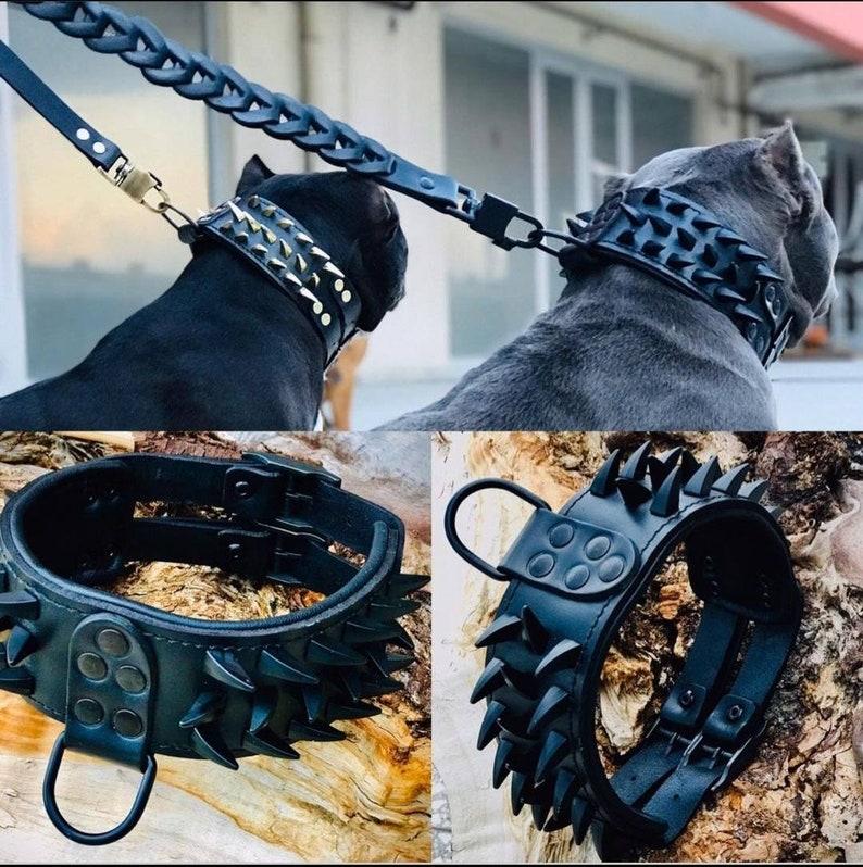 黑色皮革铆钉狗项圈和带钉的皮带,用于图像 4