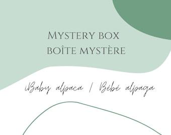 Mystery Box - Baby alpaca yarn