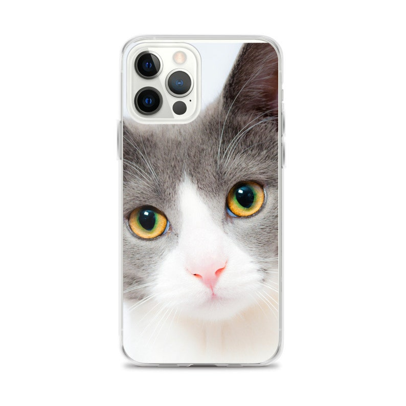 IPhone 12 Pro Max custom phone cover image 0