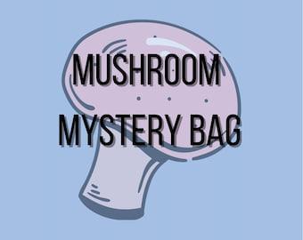 Mushroomcore Mystery Bag Cottagecore Goblincore Crowcore Mushroom Fairycore Fairy Crowcore Mystery Bag Box Mystery Bundle Free Gift