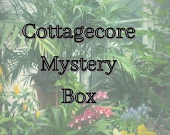 Cottagecore Mystery Box crowcore mushroomcore Goblincore Frogcore Fairycore mystery box crowcore frog fairy Witchcore cowboy frog
