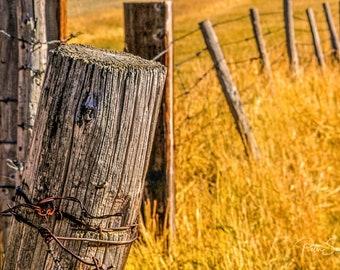 Broken Down Montana Fence