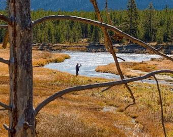 Fishing Yellowstone