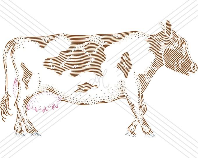 Cow · Hand-drawn vector illustration