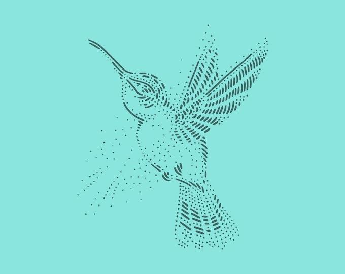 Hummingbird · Hand-drawn vector illustration